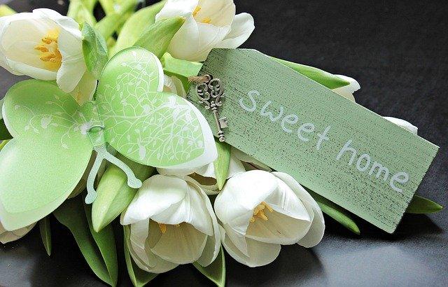 tulipány, motýl, nápis sweet home